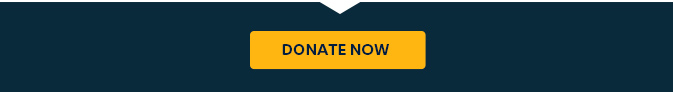 cfj-donate-now-banner